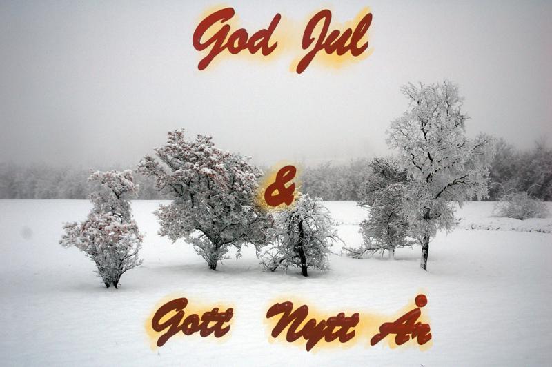 God_nytt_2014