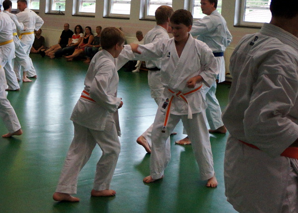gerdins_karate
