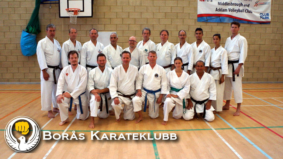 svenska_karatekas